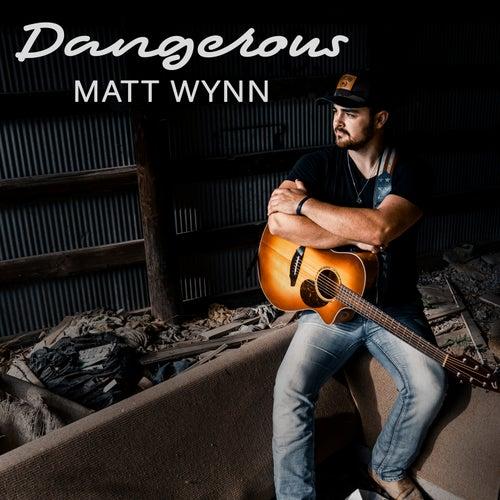 Dangerous by Matt Wynn