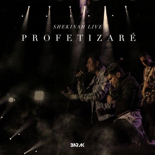 Profetizaré (Shekinah Live) de Barak