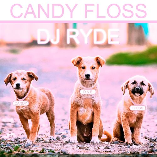 Candy Floss by Dj Ryde