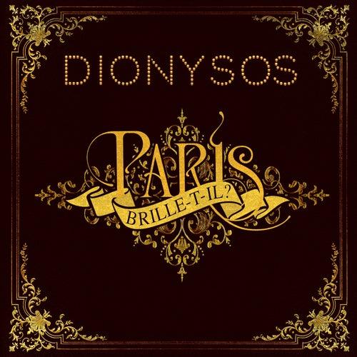 Paris brille-t'il ? by Dionysos