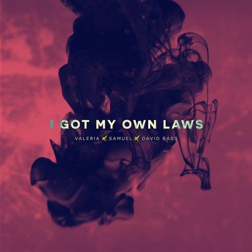 I Got My Own Laws de Valeria