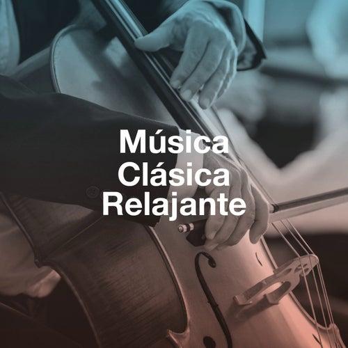 """Various Artists: """"Música Clásica Relajante"""""""