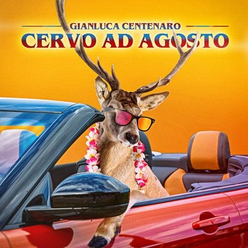 Cervo ad agosto de Gianluca Centenaro