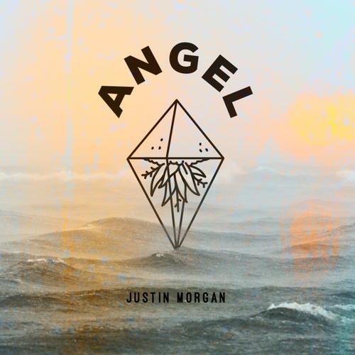 Angel von Justin Morgan