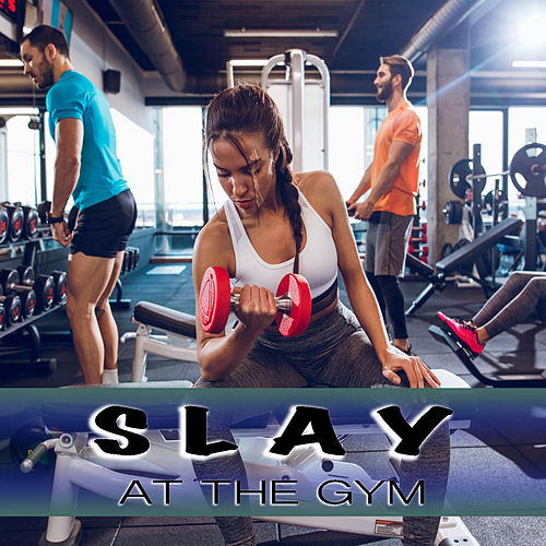 Slay At The Gym de Various Artists