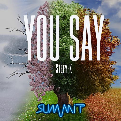 You Say by Stefy K