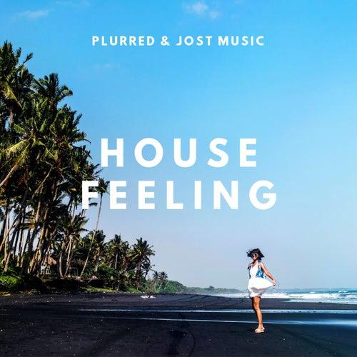 House Feeling (Radio Edit) by Plurred
