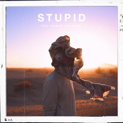 Stupid de Caden Jester