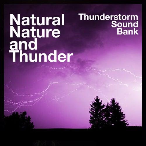 Natural Nature and Thunder de Thunderstorm Sound Bank