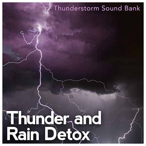 Thunder and Rain Detox de Various Artists
