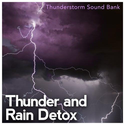 Thunder and Rain Detox de Various Artists