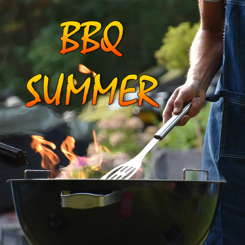 BBQ Summer de Various Artists