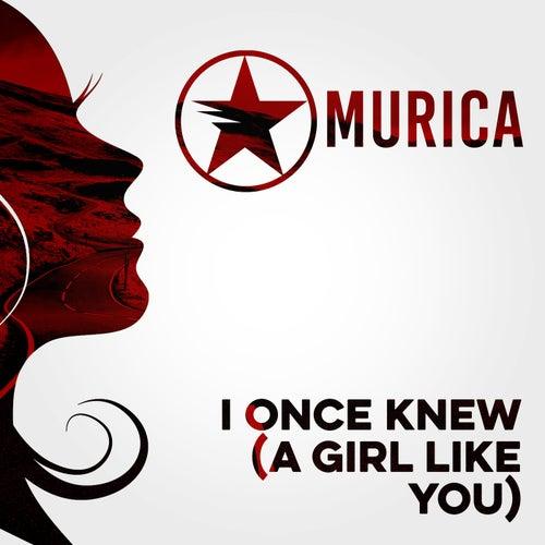 I Once Knew (A Girl Like You) de Murica