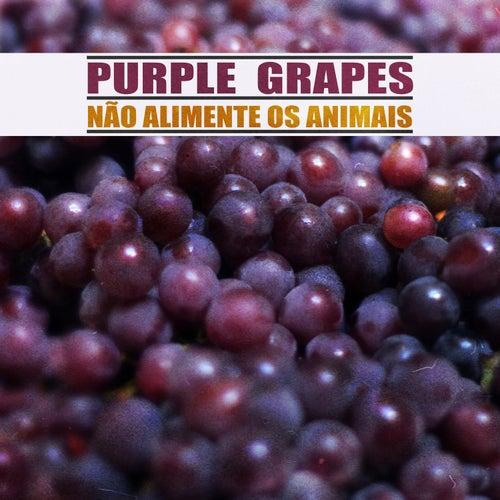 Purple Grapes de Não Alimente os Animais
