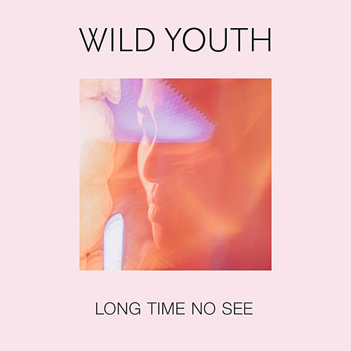 Long Time No See by Wild Youth