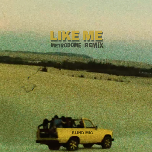 Like Me (Metrodome Remix) by Blind Mic
