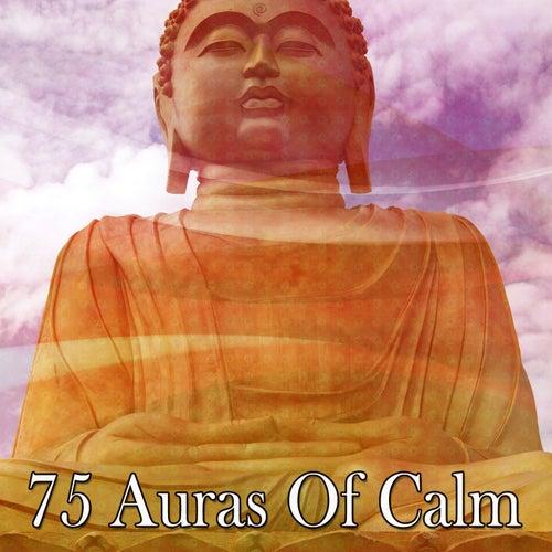 75 Auras of Calm von Guided Meditation