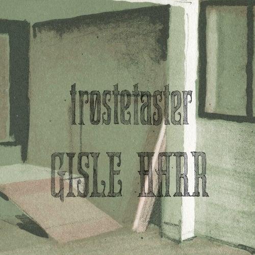Trøstetaster by Gisle Harr