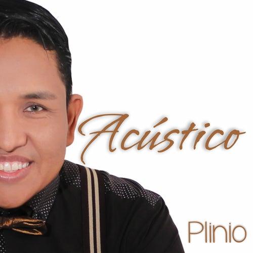 Acústico by Plinio Soares