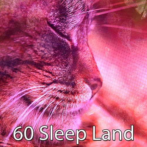 60 Sleep Land de Ocean Sounds Collection (1)