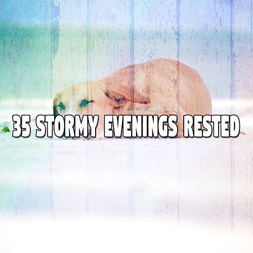 35 Stormy Evenings Rested by Relaxing Rain Sounds