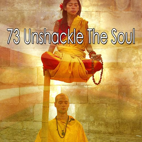 73 Unshackle the Soul de Nature Sounds Artists