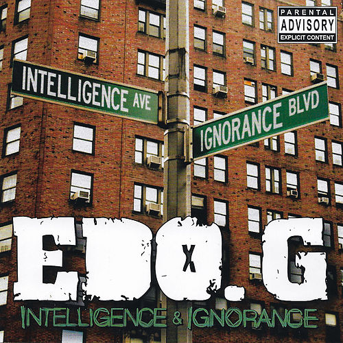 Intelligence & Ignorance von Edo G.