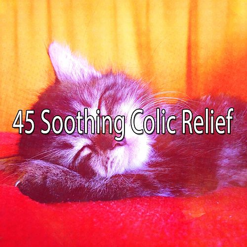 45 Soothing Colic Relief de Ocean Sounds Collection (1)