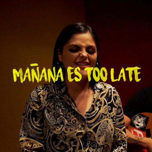 Mañana es too late de Fernanda