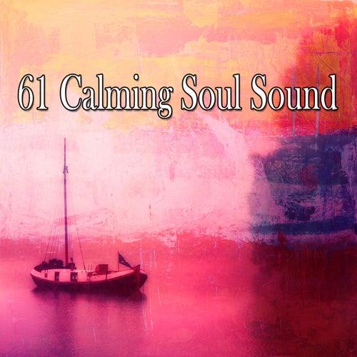 61 Calming Soul Sound by Zen Music Garden