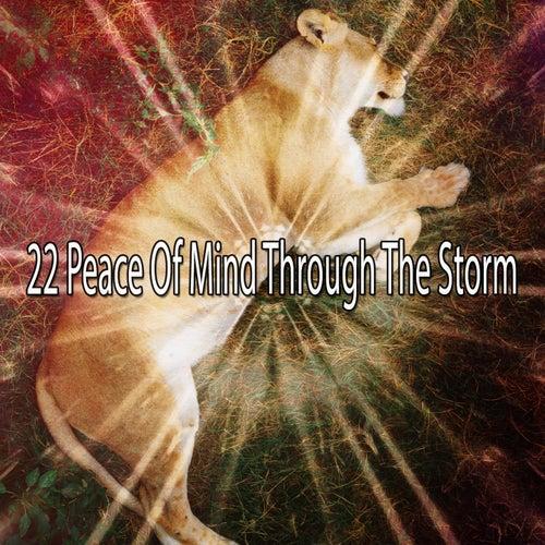 22 Peace of Mind Through the Storm by Rain for Deep Sleep (1)