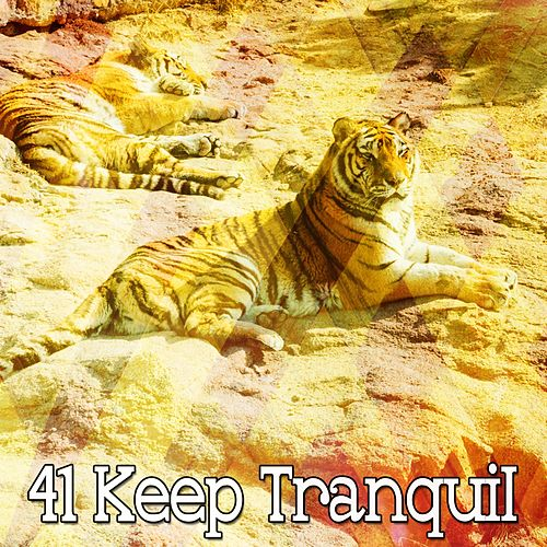 41 Keep Tranquil by Soothing White Noise for Relaxation