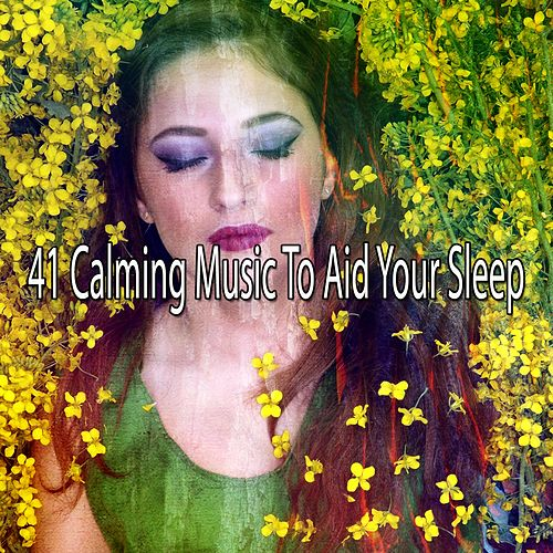 41 Calming Music to Aid Your Sleep von Best Relaxing SPA Music