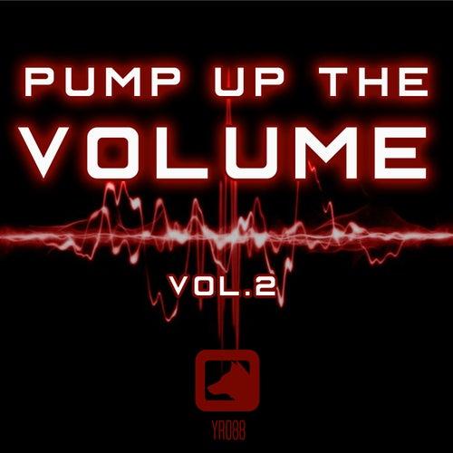 Pump Up The Volume, Vol. 2 von Various