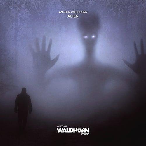 Alien by Antony Waldhorn
