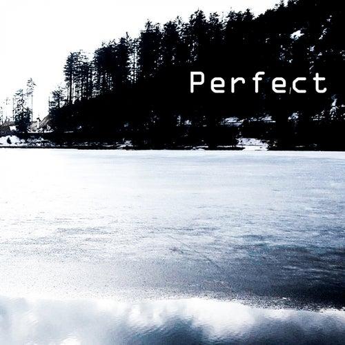 Perfect de Anna Maria Bagger