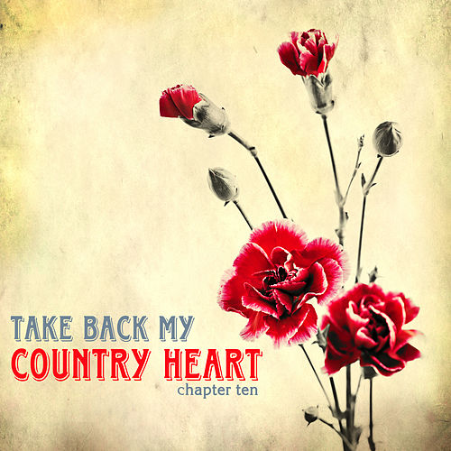 Take Back My Country Heart, Vol. 10 by Various Artists