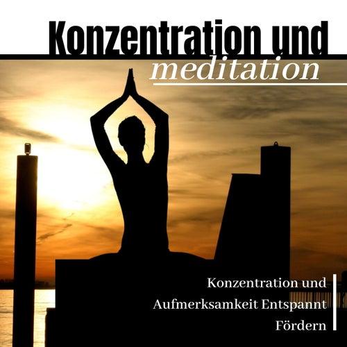 Konzentration und Meditation: Konzentration und Aufmerksamkeit Entspannt Fördern von Entspannungsmusik Dream