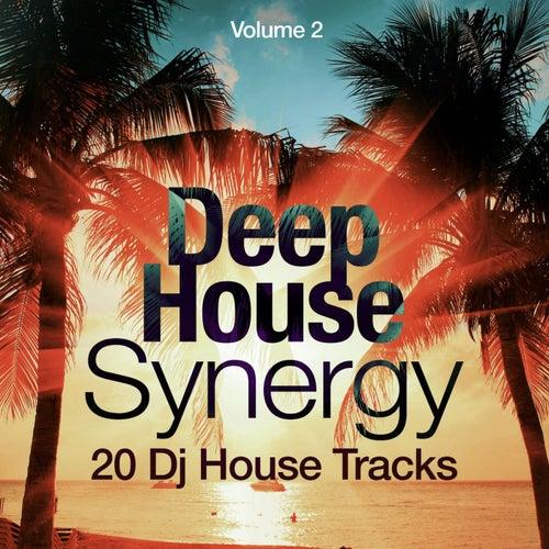 Deep-House Synergy, Vol. 2 (20 DJ House Tracks) von Various Artists
