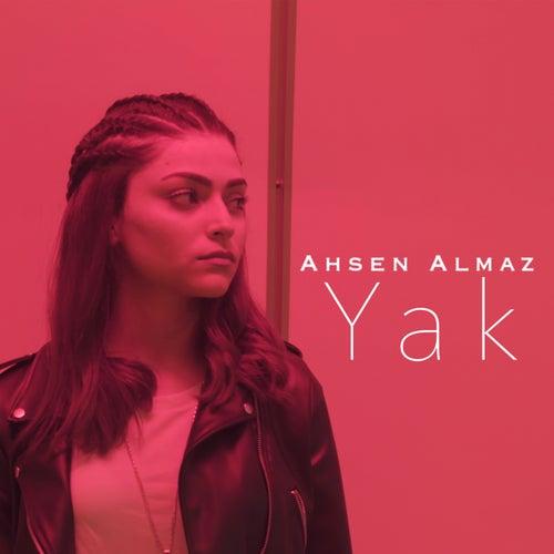 Yak by Ahsen Almaz
