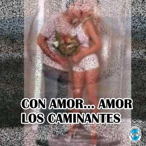 Con Amor... Amor by Los Caminantes