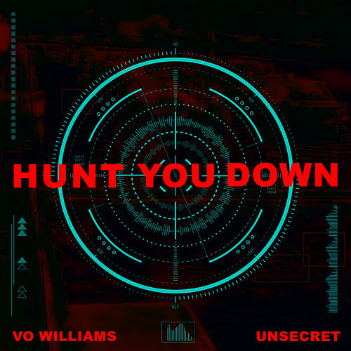 Hunt You Down by Vo Williams