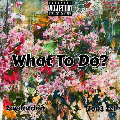 What To Do? de Zon3 Zel
