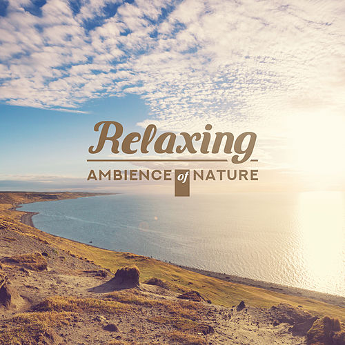 Relaxing Ambience of Nature - Immerse Yourself in Nature with Relaxing New Age Music with Natural Soundscapes by Ambient Music Therapy