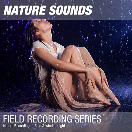 Nature Recordings - Rain & wind at night by Nature Sounds (1)