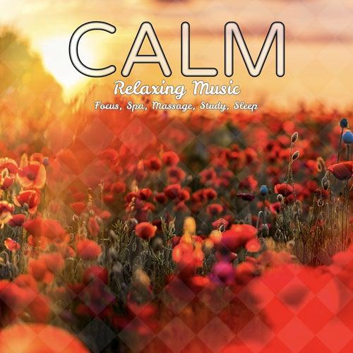 Calm Relaxing Music: Focus, Spa, Massage, Study, Sleep de Various Artists