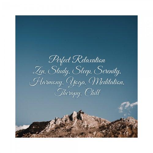 Perfect Relaxation: Zen, Study, Sleep, Serenity, Harmony, Yoga, Meditation, Therapy, Chill de Various Artists