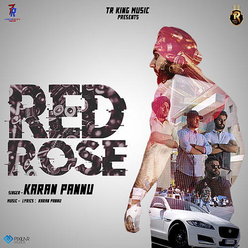 Red Rose by Karan Pannu