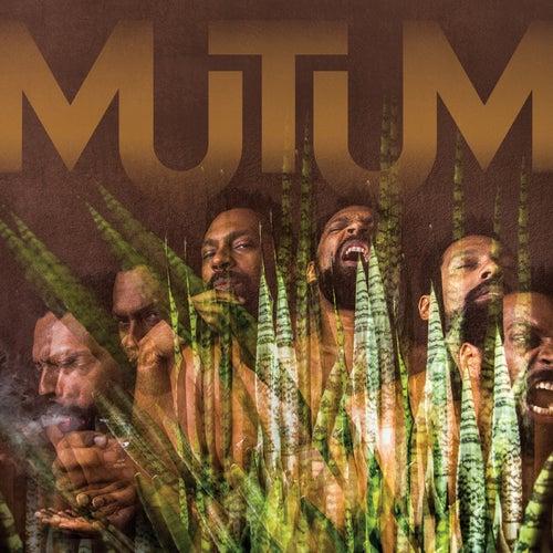 Mutum de Mutum