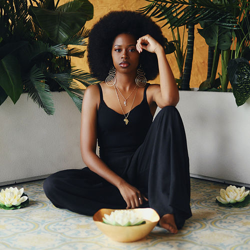 Soul Alchemist by Erica LeShai